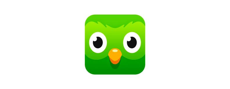 Iconography of Duolingo App
